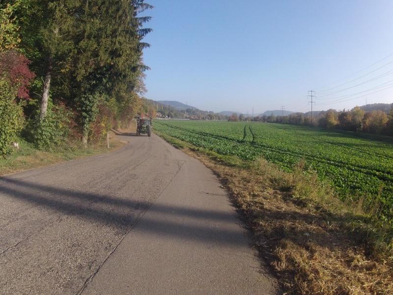 im Fricktal zum Bözberg hinauf