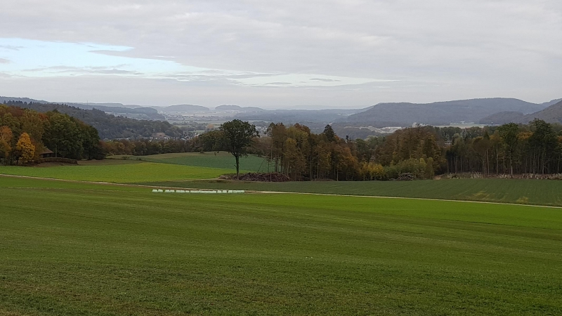Ausblick ins Rheintal, oberhalb Fisibach