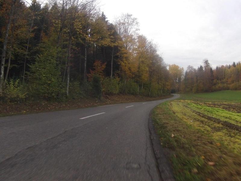 Zwischen Dintikon und Ammerswil
