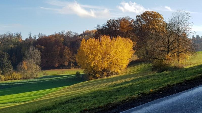 Herbst im Buenztal