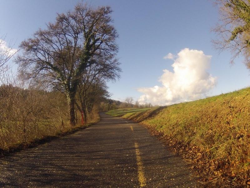 Radweg nach Möriken