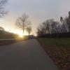 Abendsonne bei Mägenwil