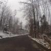 dem Schnee entgegen