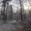 Winterlandschaft bei Mägenwil