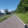 Radweg entlang dem Rhein