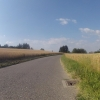 Getreidefelder oberhalb Veltheim
