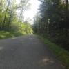 im Wald vor der Passhöhe Bürensteig