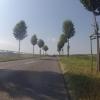 unterwegs im Reusstal zwischen Gnadenthal und Niederwil
