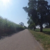 Unterwegs im Reusstal, entlang von Maisfeldern