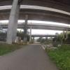 Brücken in Dättwil