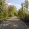 Radweg entlang des Klingnauer Stausees