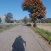 Im Rheintal zwischen Leibstadt und Full