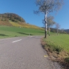 Rebberg am Rotberg