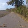 Radweg im Aaretal von Klingnau nach Felsenau