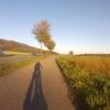 Von Möriken nach Brunegg