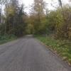Auffahrt zum Heitersberg durch den herbstlichen Wald