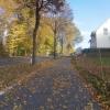 Herbstlicher Radweg bei Mülligen