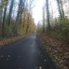 Durch die Auenwälder im Aaretal