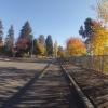 Herbstliche Farben am Hallwilersee