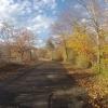 Radweg auf dem Damm der Aare