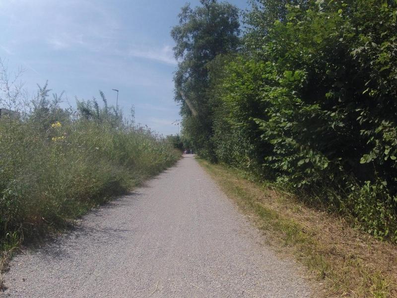 Radweg von Oberentfelden nach Kölliken