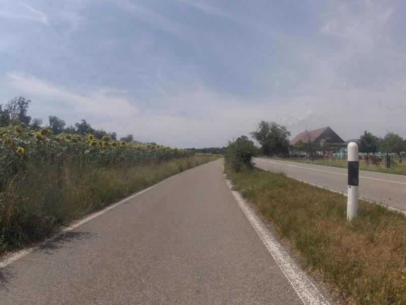 Radweg zwischen Rothrist und Murgenthal