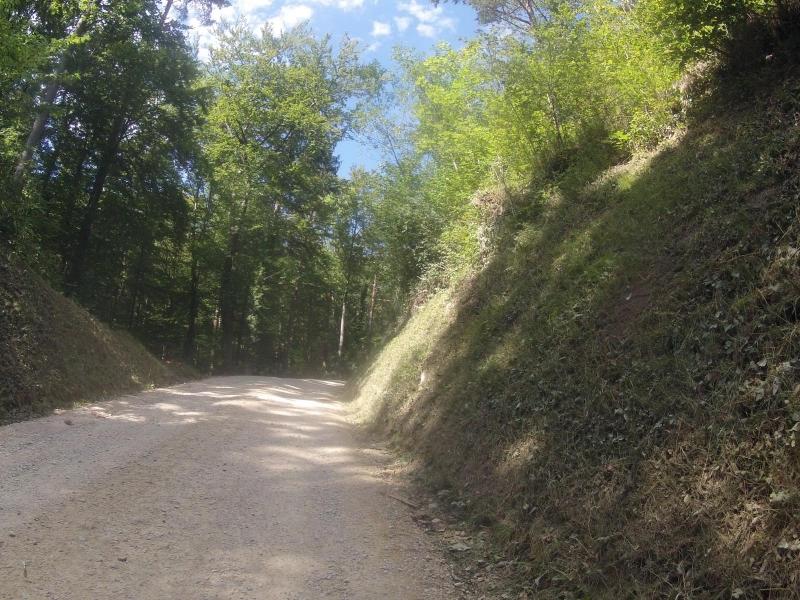 Von Schinznach-Dorf nach Linn