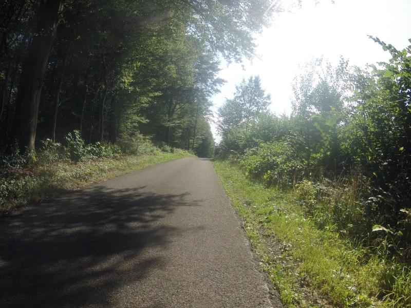 Radweg vom Birrfeld nach Mägenwil