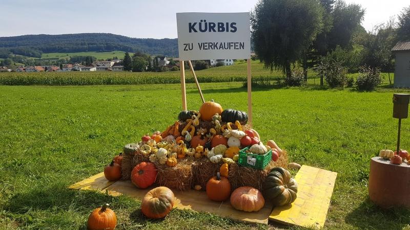 Zwischen Lengnau und Ehrendingen