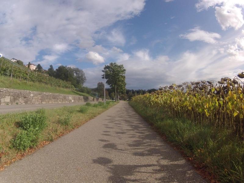Radweg von Niederrohrdorf nach Busslingen