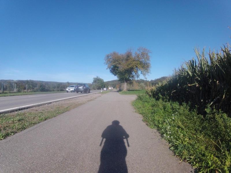 unterwegs im Rheintal, bei Leibstadt