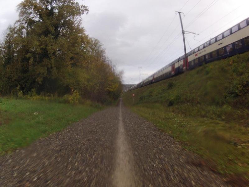 Radweg nach Vogelsang