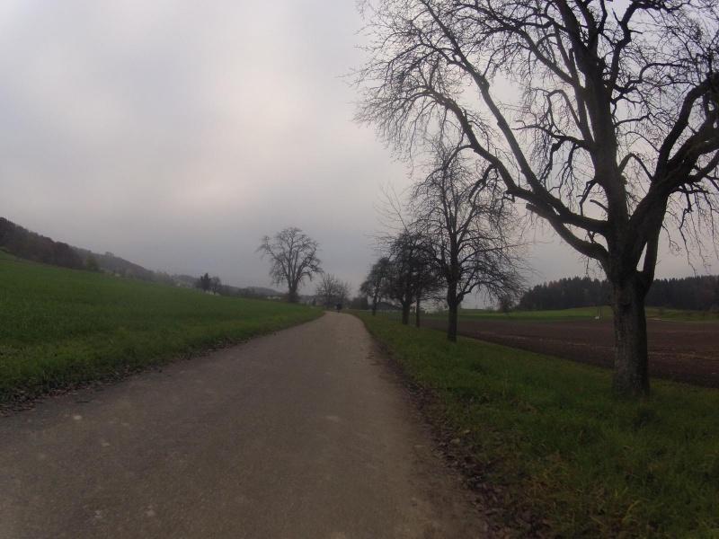 Radweg nach Künten