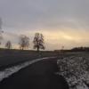 Radweg nach Waltenschwil
