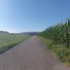 Radweg von Hendschiken nach Othmarsingen im Bünztal
