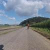 Radweg von Rekingen noch Mellikon
