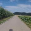 Radweg bei Veltheim im Aaretal