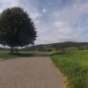 Radweg im Birrfeld