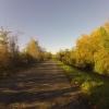 Herbstlicher Radweg auf dem Damm der Aare bei Schinznach-Dorf