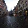 Bremgarten mit Weihnachtsbaum