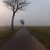 Villigerfeld im Nebel