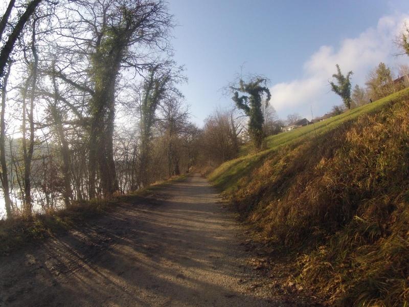 Der Aare entlang