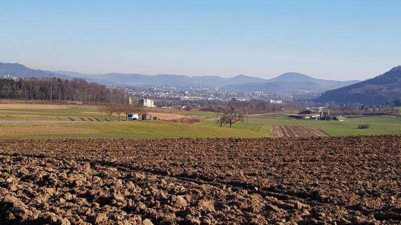 Stein und Bad-Säckingen, Jura