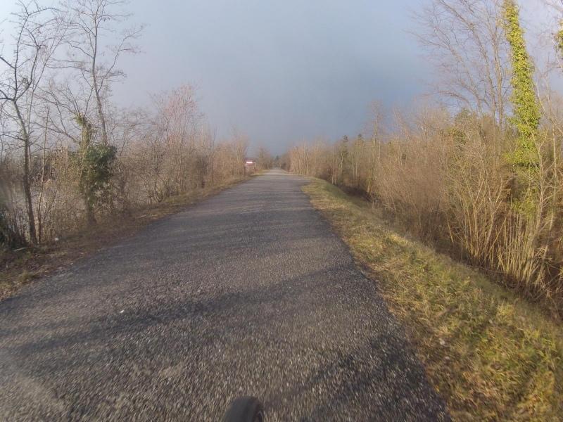 Sonne auf dem Dammweg der Aare entlang