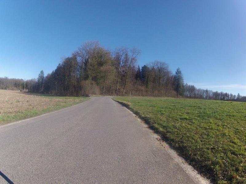Zwischen Schafisheim und Seon