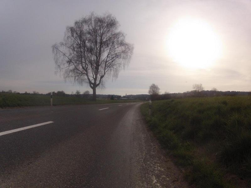 von Gnadenthal nach Niederwil