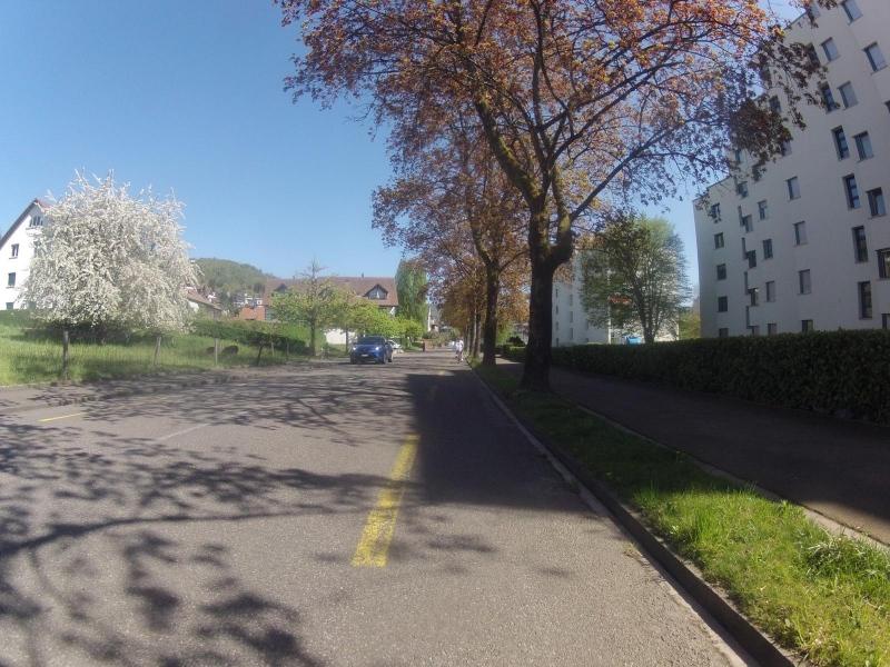 Nussbaumen