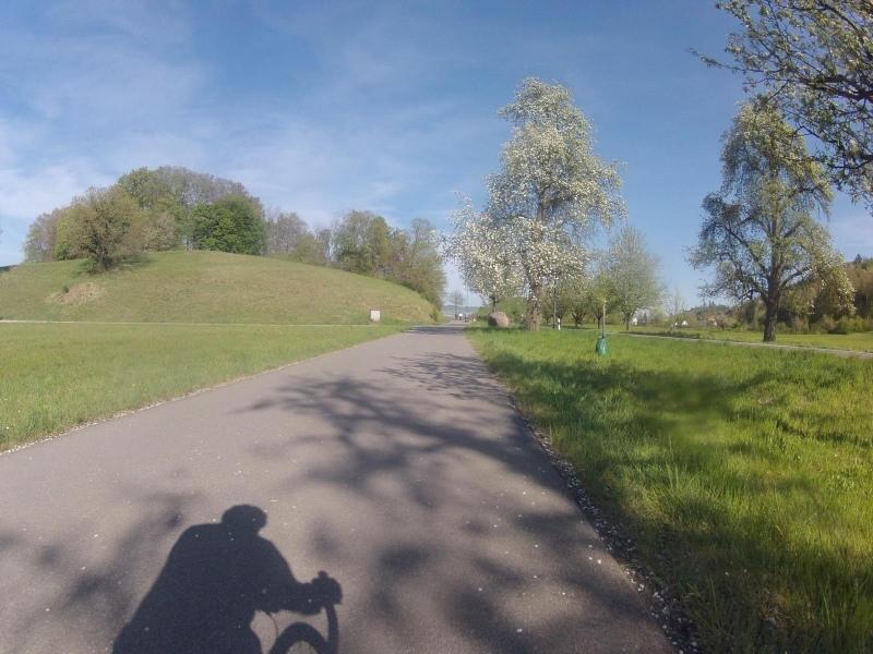 Zwischen Mägenwil und Büblikon