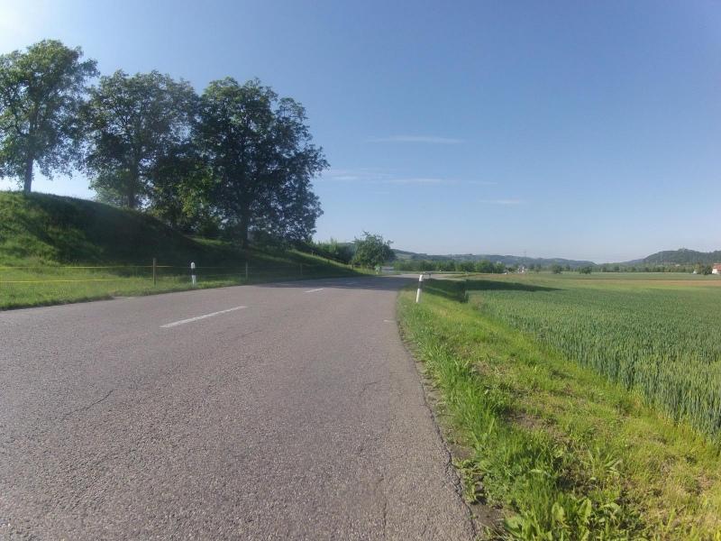 Schinznacherfeld