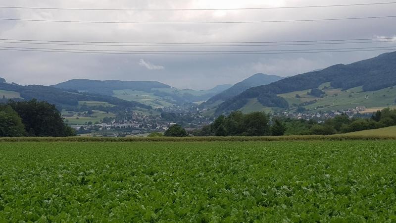 Blick von Scherz ins Schenkenbergertal